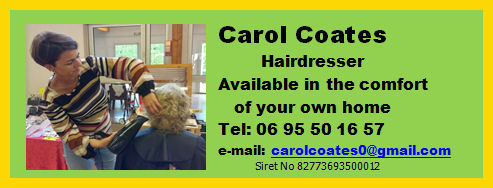 carol hair advert